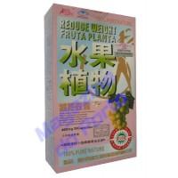 Fruta Planta (caixa rosa) Concentrado.(Preço Promocional Importado)